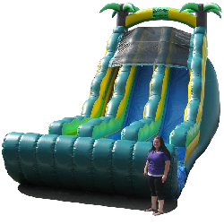 TROPICAL DUAL 22 ft SLIDE - DRY