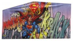 SUPERMAN PANEL